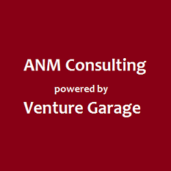 ANM consulting